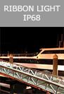 BL IP 68 ribbon light